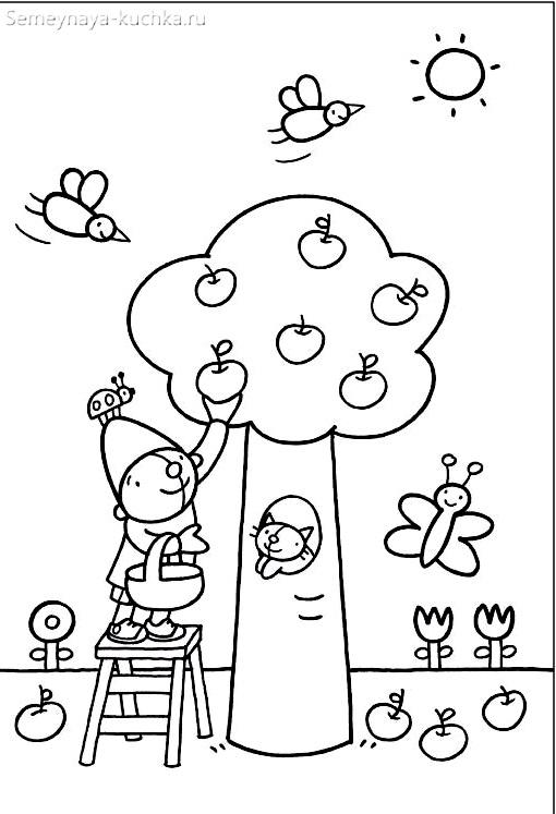 раскраска для малышей яблоня дерево гномик