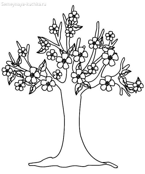 раскраска весеннее цветущее дерево