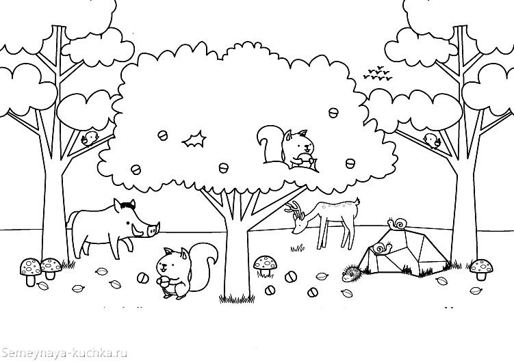 раскраска осень в лесу звери у дерева