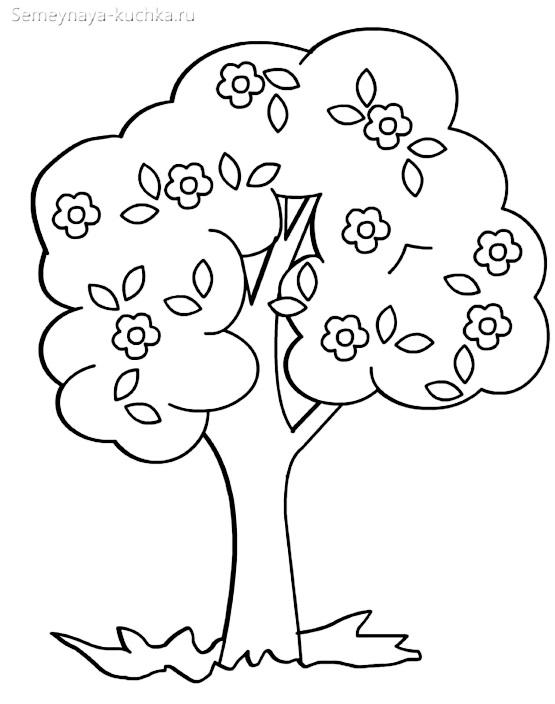 раскраска весеннее дерево в цвету