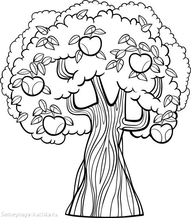 раскраска яблоневое дерево