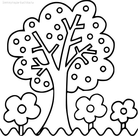 раскраска шаблон дерево весной и осенью