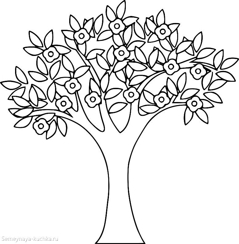 раскраска дерево цветет весной