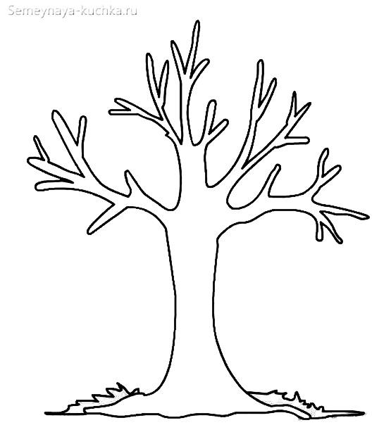 шаблон ствол дерева голый