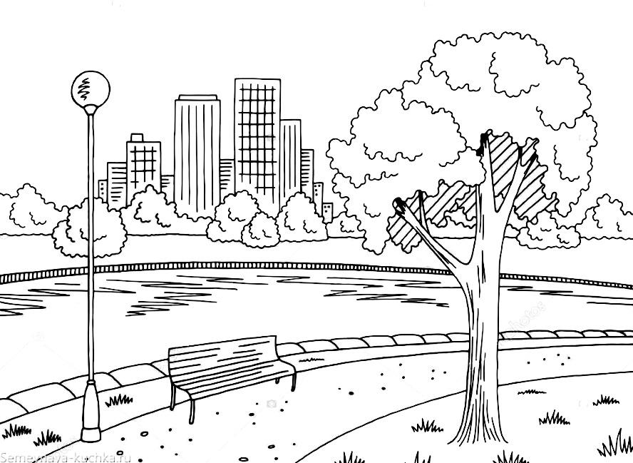 раскраска городское дерево