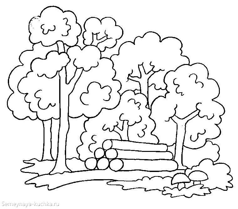 раскраска деревья в лесу