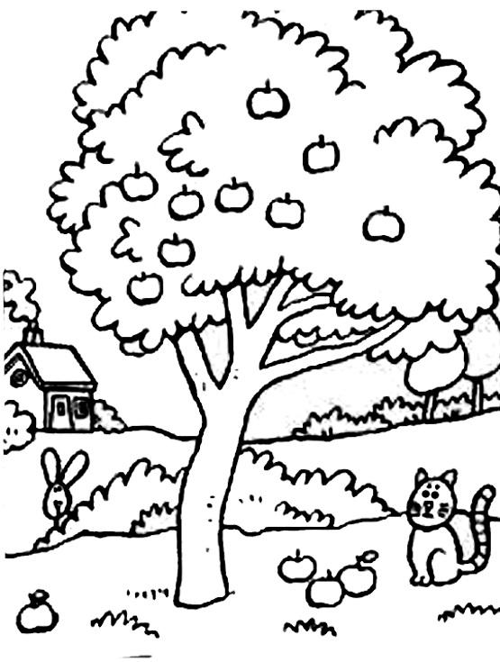 раскраска дерево в деревне