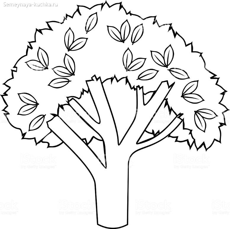 раскраска красивое дерево простой шаблон
