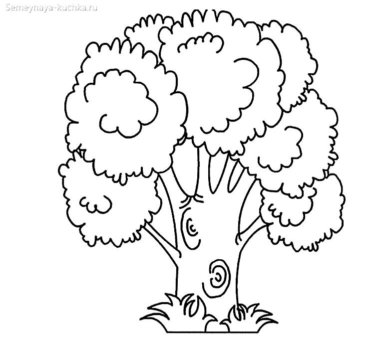 раскраска шаблон толстое дерево