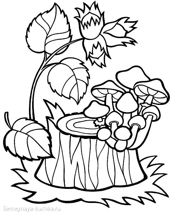 раскраска грибы опята на пеньке