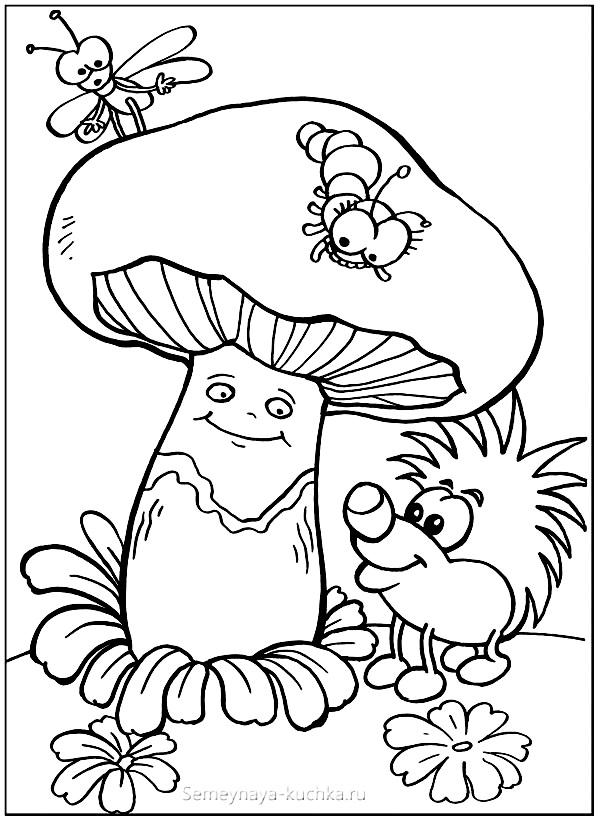 раскраска гриб