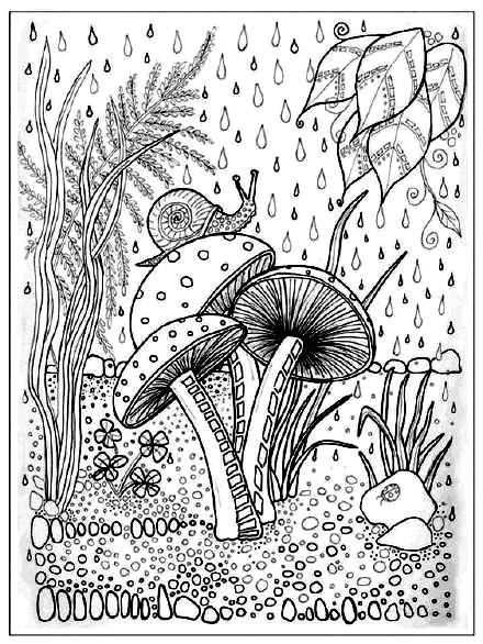 раскраска анти стресс грибы