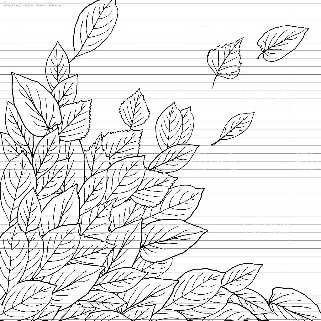 раскраска листья открытка