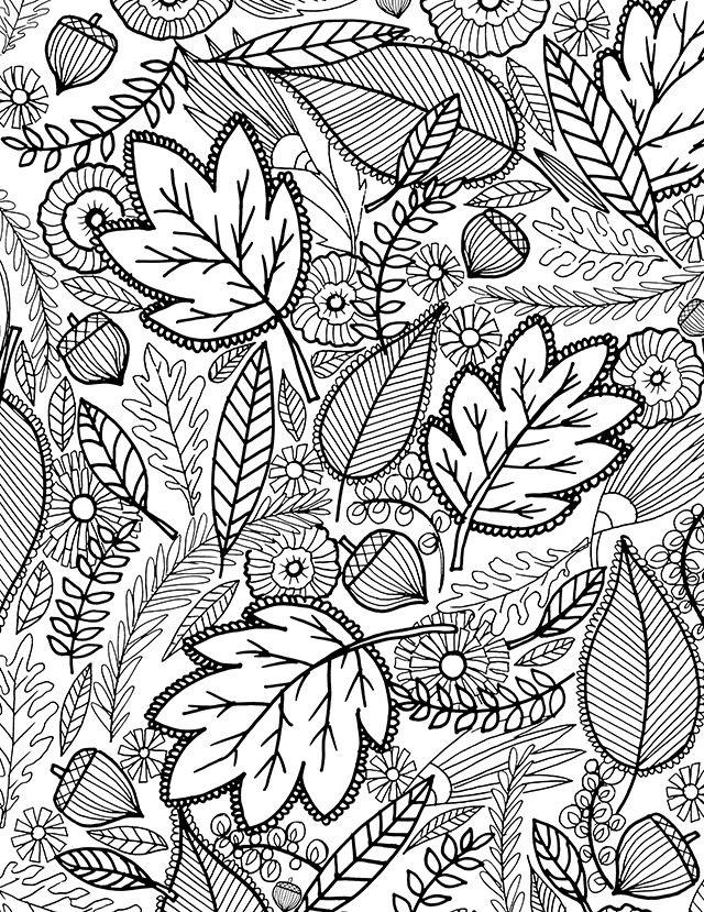 раскраска листья антистресс
