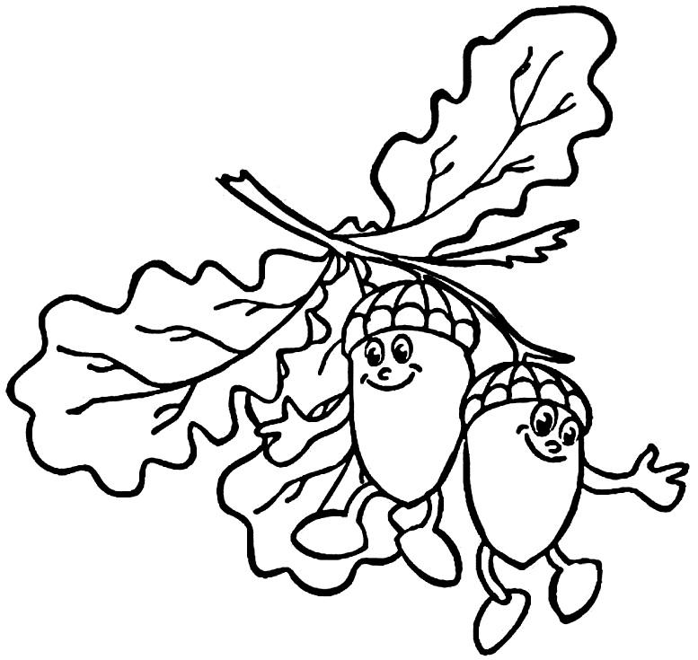 раскраска листья дуба детская
