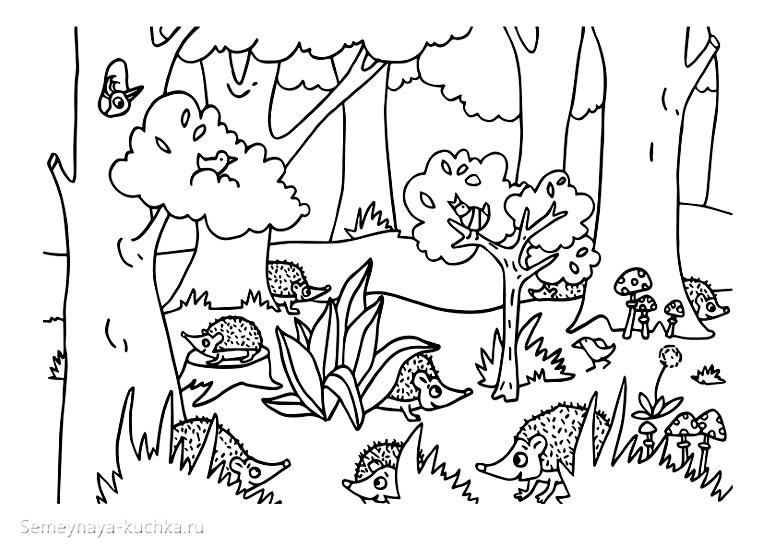 раскраска осень в лесу с ежиками