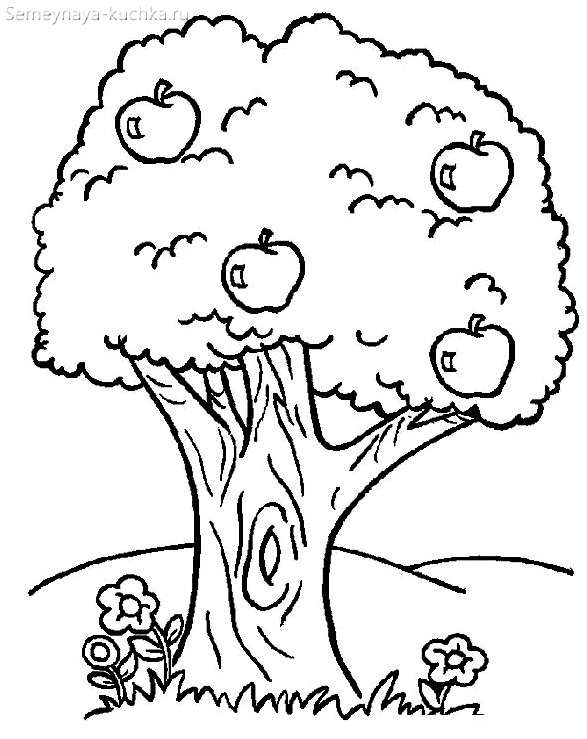 раскраска дерево с плодами