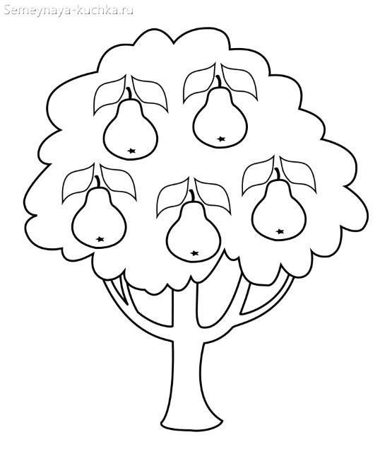 раскраска шаблон грушевое дерево