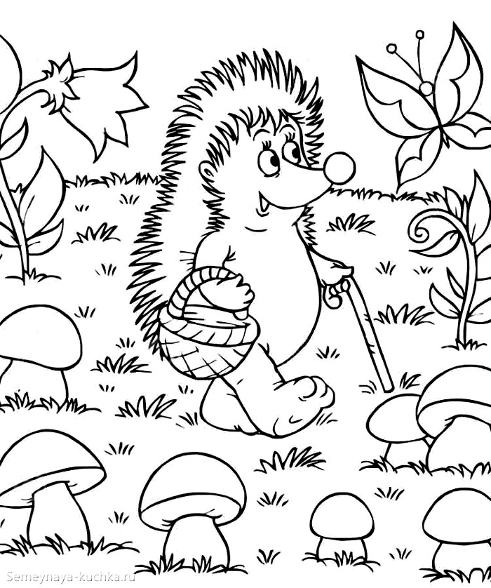 раскраска осенняя для детей ежик ищет грибы