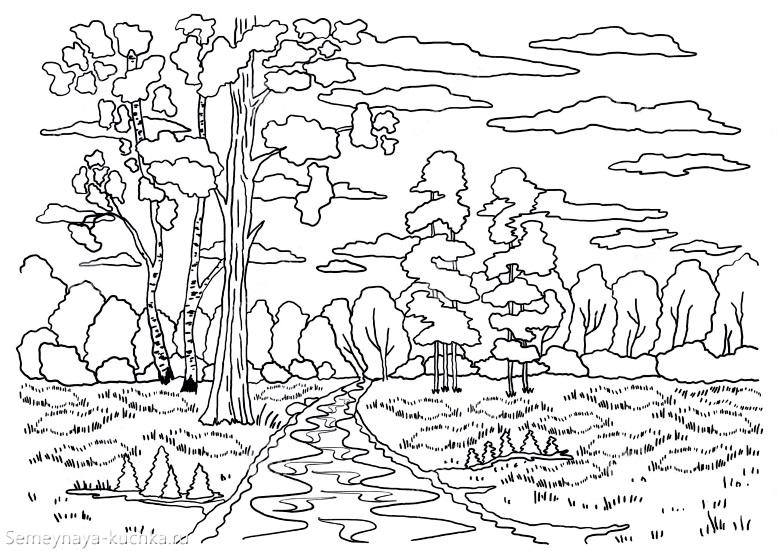 раскраска осень в лесу