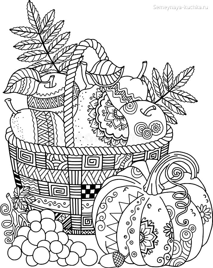 раскраска осень урожай картинка