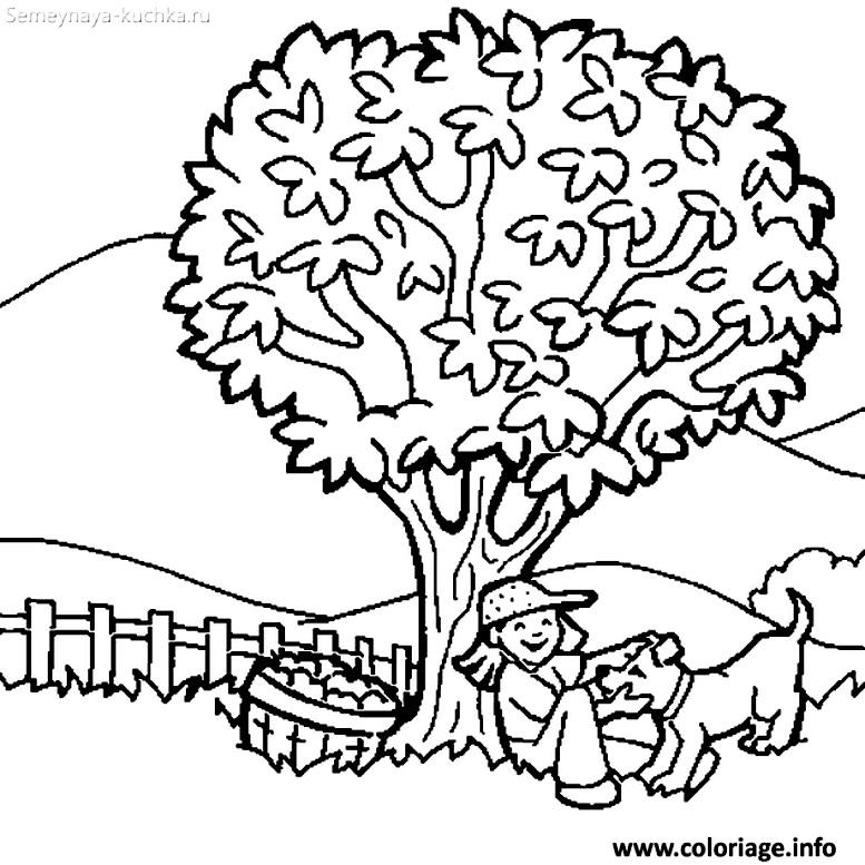 раскраска дерево с забором