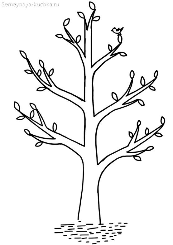 раскраска шалон дерево весной распускает листья из почек