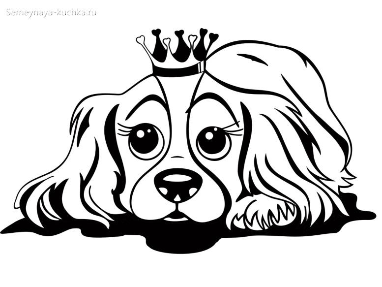 раскраска для девочки милая собачка