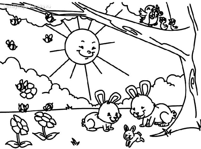 раскраска для девочки кролики
