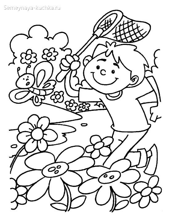 раскраска для девочки лето бабочки цветы