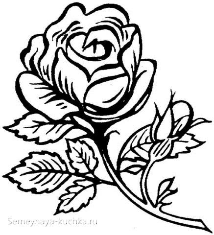 раскраска роза для девочки