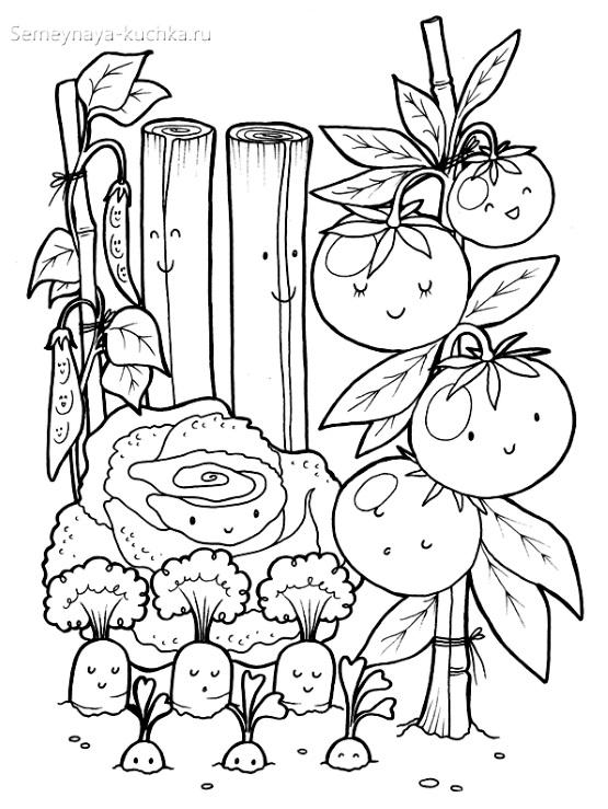 раскраска овощи в огороде