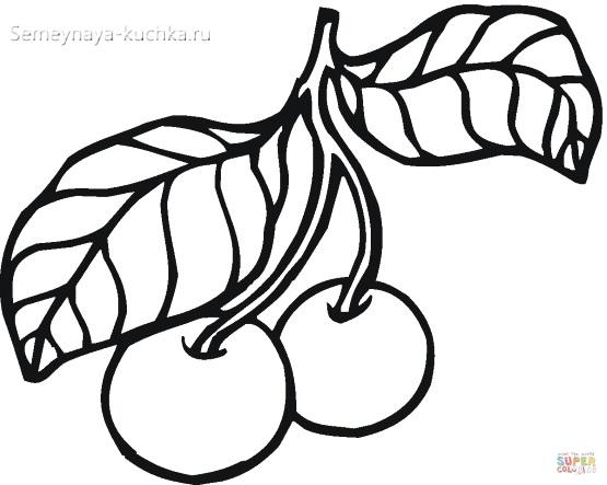раскраска фрукты вишня